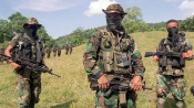 Colombia's illegal armed groups' areas of influence
